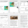 sea turtle unit study